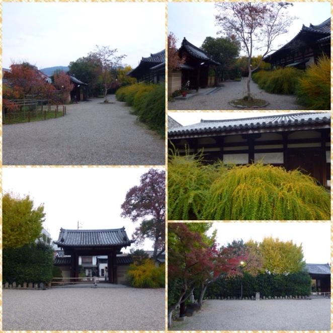 20140108-022006.jpg