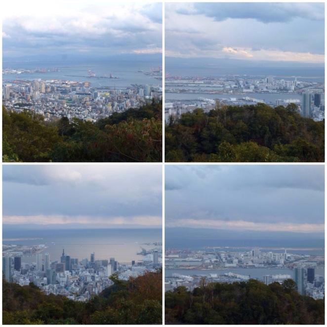 20140123-001821.jpg