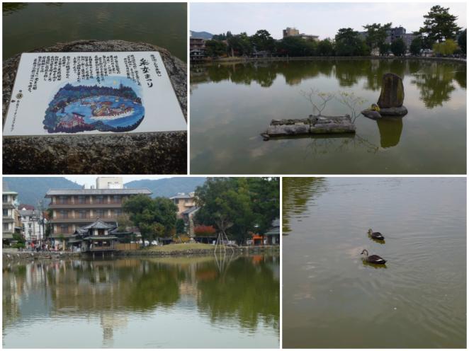 Nara Park Pond