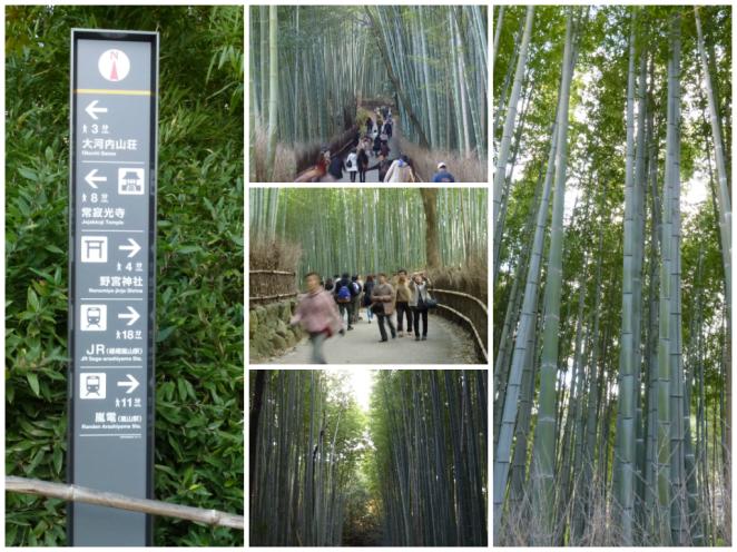 Arashiyama Bamboo 2