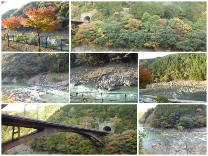 Sagano Scenic Rail 2