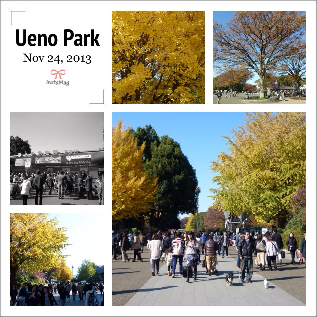 Ueno Park Autumn i Guess Ueno Park is Never